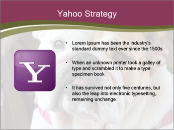 0000073578 PowerPoint Template - Slide 11