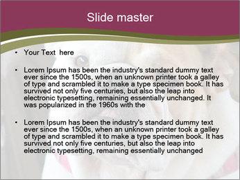 0000073578 PowerPoint Template - Slide 2