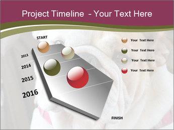 0000073578 PowerPoint Template - Slide 26