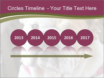 0000073578 PowerPoint Template - Slide 29
