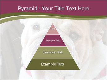 0000073578 PowerPoint Template - Slide 30