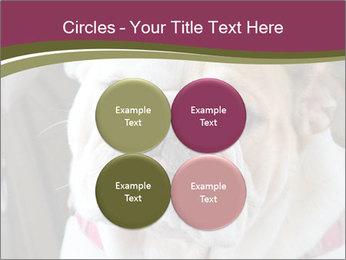 0000073578 PowerPoint Template - Slide 38
