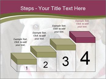 0000073578 PowerPoint Template - Slide 64