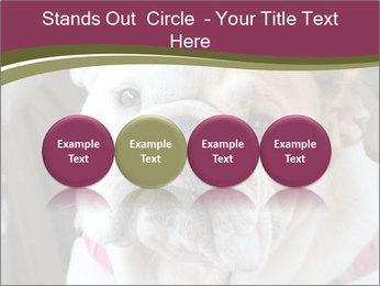 0000073578 PowerPoint Template - Slide 76