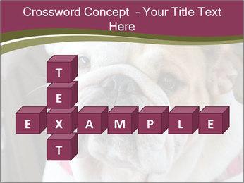 0000073578 PowerPoint Template - Slide 82
