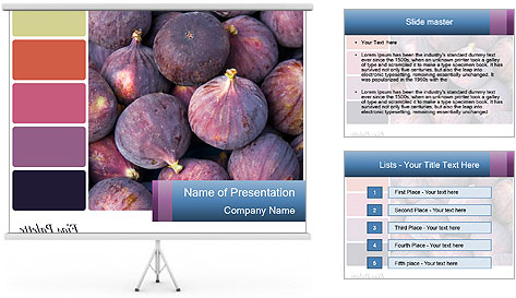 0000073579 PowerPoint Template