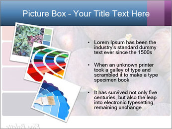 0000073579 PowerPoint Template - Slide 17
