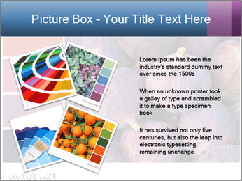 0000073579 PowerPoint Template - Slide 23