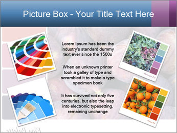 0000073579 PowerPoint Template - Slide 24