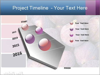 0000073579 PowerPoint Template - Slide 26
