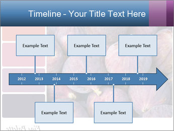 0000073579 PowerPoint Template - Slide 28