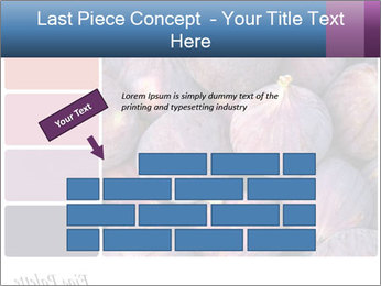 0000073579 PowerPoint Template - Slide 46