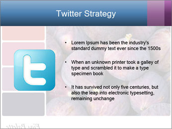 0000073579 PowerPoint Template - Slide 9