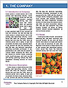 0000073579 Word Template - Page 3