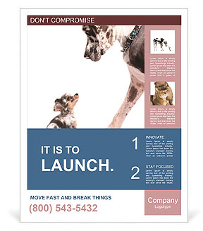 0000073586 Poster Templates