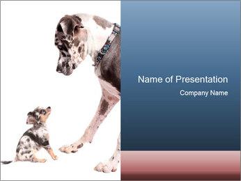 0000073586 PowerPoint Templates - Slide 1
