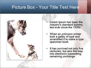 0000073586 PowerPoint Templates - Slide 13