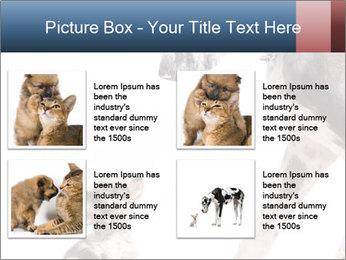 0000073586 PowerPoint Templates - Slide 14