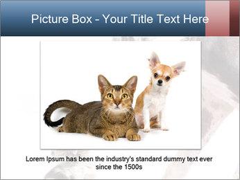 0000073586 PowerPoint Templates - Slide 15