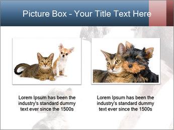 0000073586 PowerPoint Templates - Slide 18
