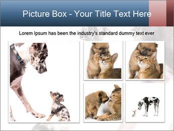 0000073586 PowerPoint Templates - Slide 19