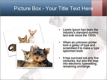 0000073586 PowerPoint Templates - Slide 20