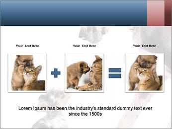 0000073586 PowerPoint Templates - Slide 22