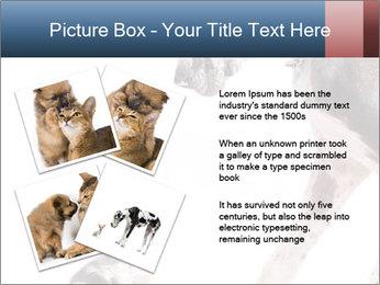 0000073586 PowerPoint Templates - Slide 23