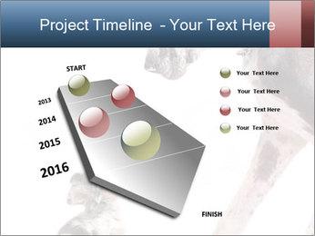 0000073586 PowerPoint Templates - Slide 26