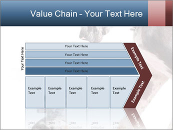0000073586 PowerPoint Templates - Slide 27