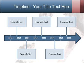 0000073586 PowerPoint Templates - Slide 28