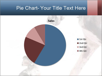 0000073586 PowerPoint Templates - Slide 36