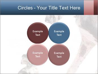 0000073586 PowerPoint Templates - Slide 38