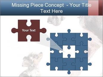 0000073586 PowerPoint Templates - Slide 45