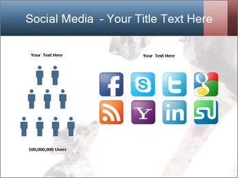 0000073586 PowerPoint Templates - Slide 5