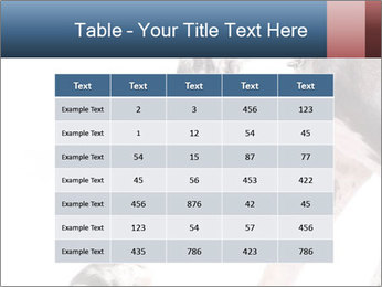 0000073586 PowerPoint Templates - Slide 55