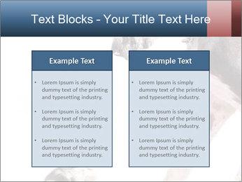 0000073586 PowerPoint Templates - Slide 57