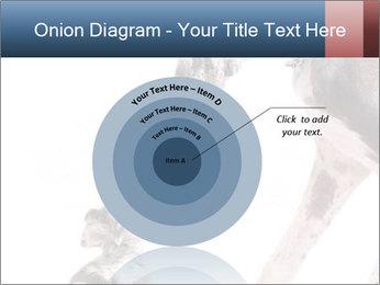 0000073586 PowerPoint Templates - Slide 61