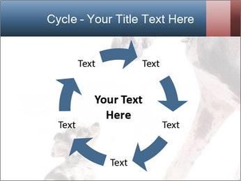 0000073586 PowerPoint Templates - Slide 62