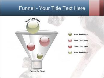 0000073586 PowerPoint Templates - Slide 63