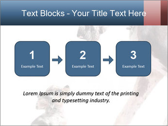 0000073586 PowerPoint Templates - Slide 71