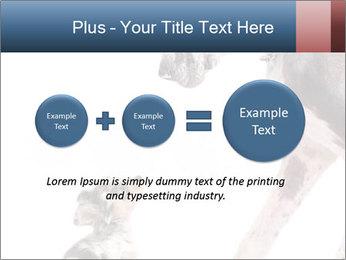 0000073586 PowerPoint Templates - Slide 75
