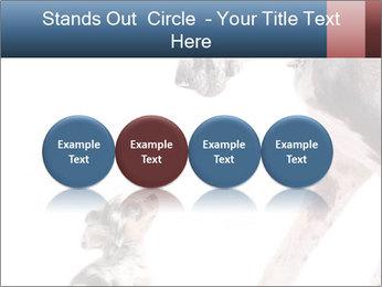 0000073586 PowerPoint Templates - Slide 76