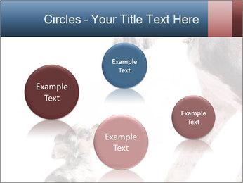 0000073586 PowerPoint Templates - Slide 77