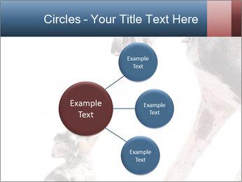 0000073586 PowerPoint Templates - Slide 79