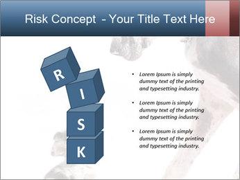 0000073586 PowerPoint Templates - Slide 81
