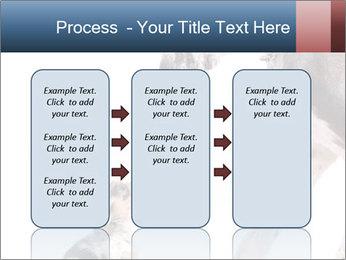 0000073586 PowerPoint Templates - Slide 86