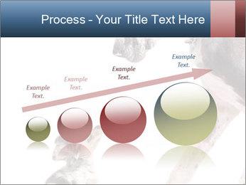 0000073586 PowerPoint Templates - Slide 87