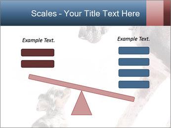 0000073586 PowerPoint Templates - Slide 89