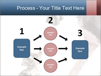 0000073586 PowerPoint Templates - Slide 92